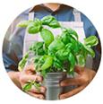 Iens Verminder de CO2-voetafdruk in het restaurantmanagement