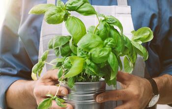 ElTenedor - Responsabilidad social en gestión de restaurantes
